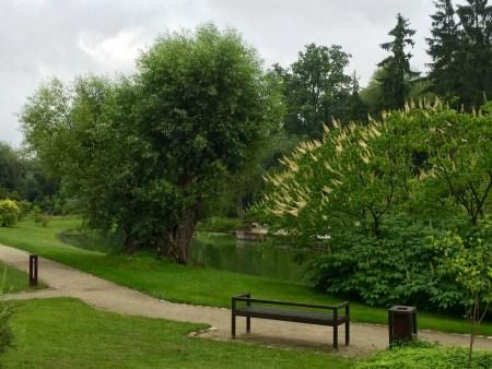Il parco a Żelazowa Wola